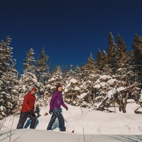 Snoshoeing at Mont-Tremblant National Park