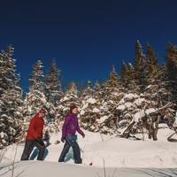 Raquette au Parc National du Mont-Tremblant